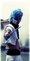 Grimmjow Jaegerjaques by IGrayI