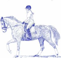 Dressage Horse Drawing by lorni3