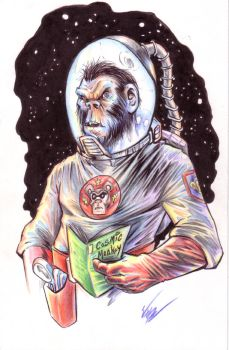 Cosmic Monkey Comics by BaneNascent