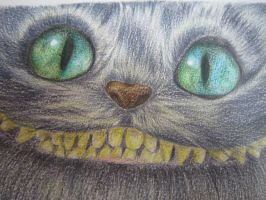 Cheshire Cat by vivian-enjoyable-art