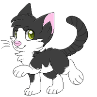 KP: Patches by fawnbite