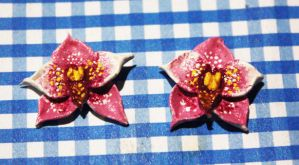 .: Orchid Studs :. by tanya1