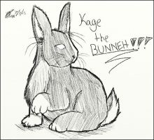 Kage the BUNNEH by ChaoticPuppetMaster