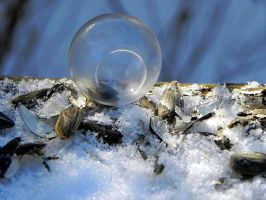 Frozen Soap Bubbles at minus 20 degrees C by Lou-in-Canada