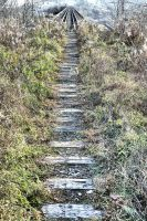 Trellis:  End of the Line by basseca