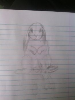 Mini-lop Sketch by mariobros1807
