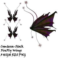 Wings Fairy FireFly by Comtessa-Stock