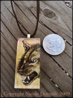 Dark Rage Glass Pendant by thornwolf