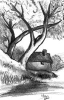 The house and the trees by Adutelluma