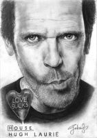 House M.D. / Hugh Laurie by Gokalp10