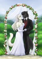 Balu and Nikki's Big Day by TheTiedTigress
