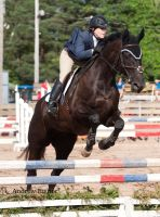 EC Light Horse Jumper 0.90m by AEisnor