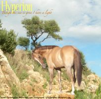 Hyperion finished by Boggeyboo