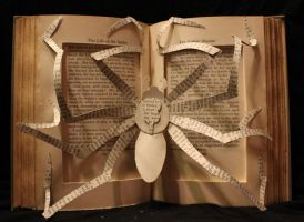 Spider Book Alteration by wetcanvas