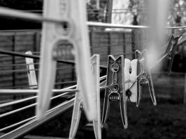 Pegs by Thundred