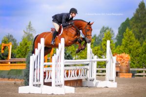 Equitate by Equus-Photography
