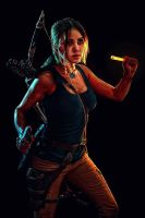 Rise of the Tomb Raider. Seeker by Elen-Mart