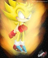 Super Radical The Hedgehog by naomithecat1