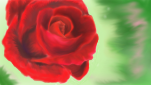 Another Rose by kingofthe3lves