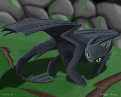 toothless by LittleZZ