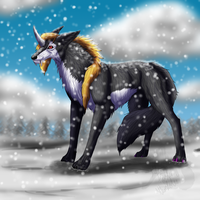 Watching falling snow by Narncolie