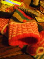 Winter Mittens II by amateras11