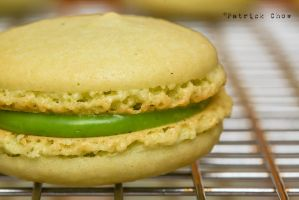 Matcha macaron 2 by patchow
