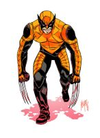 Wolverine: The Final SNIKT. by FelipeSmith