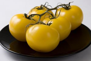 Yellow Tomatoes 1 by photoboy1002001