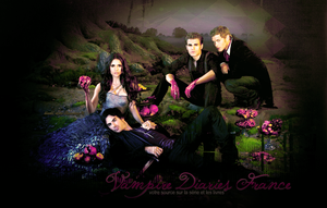 Vampire Diaries Header 3 by Linds37