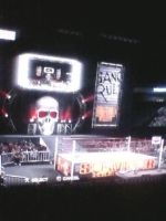 WCW Rumble Roses: Survivor Series Arena by TheRumbleRoseNetwork