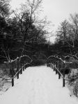 Peaceful Winter Bridge by Lilleninja