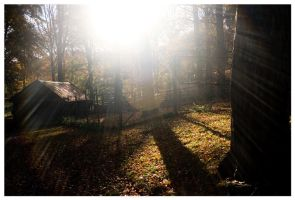Automne by floydianwaves