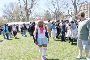 2016 Japanese Fest On the Boston Common, Pose 15 by Miss-Tbones