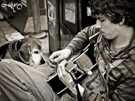 Guitar and Dog on Haight by alexrmay91