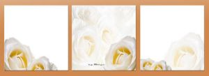 Collection of Three-white by M10tje