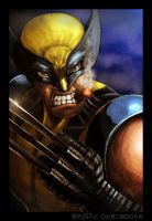 Wolverine and His Havana by sekido54