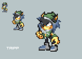 New char tripp by xPiXeLmElOdieS