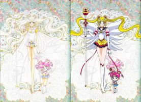 sailor cosmos anime  Sailor Cosmos and Sailor Chi...