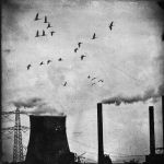 Pollution by disposable-heroX