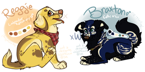 Pups for Sale by xWolfPrincex