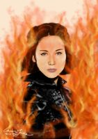 The Girl On Fire 2 - Katniss Everdeen by LauraJaneArnold
