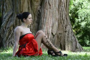 Red Satin 25 by Anariel-Stock