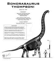 Sonorasaurus thompsoni by Paleo-King