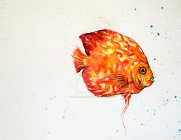 FISH by DouceArtifice
