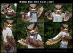 Bubo the Owl Partial by JakeJynx