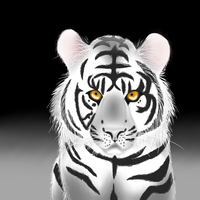 White tiger by ThePronssinuoli