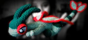 Small Crochet Flygon: Mac Camera