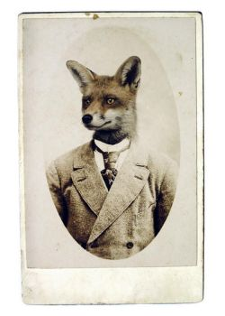 Young Mr. Fox by ThisYearsGirl