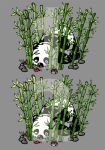 Panda 1 or Panda 2? by artshell